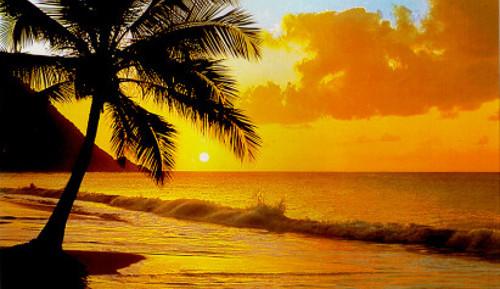 tropical-beaches-sunsetblog